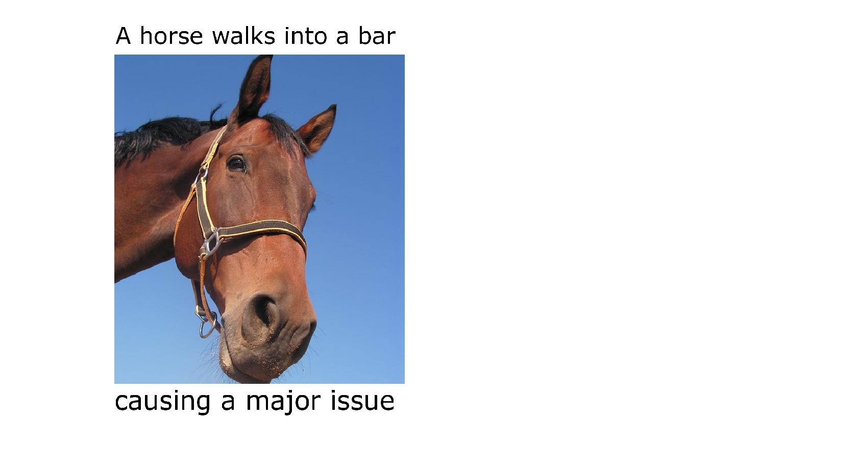 Horse walks into bar